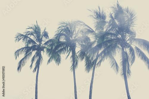 Stickers pour porte Palmier ヤシの木と空,ハワイ