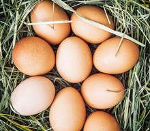 Raw Chicken Eggs In The Basket...