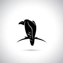 Griffon Vulture Symbol