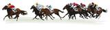 Wyścigi konne - 103088815