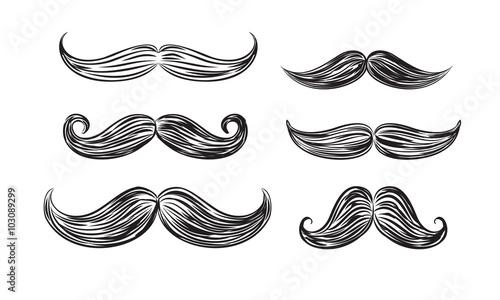 Obraz black mustache icons - fototapety do salonu