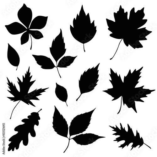 autumn leaves silhouette set Wall mural