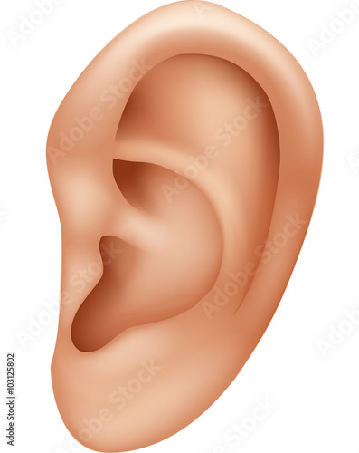 Illustration of ear human isolated on white background Canvas-taulu