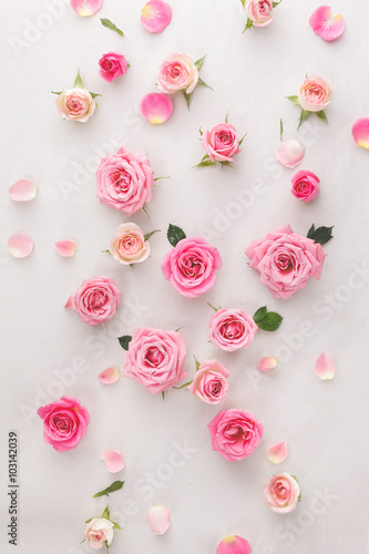 rozne-glowki-roz-rozne-miekkie-roze-i-liscie-rozrzucone-na-tle-archiwalne-widok-z-gory
