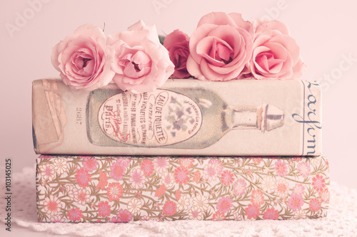 Foto-Tapete - Roses over books with vintage dust jackets (von Andreka Photography)