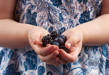 Small Child Hands Holding Blueberries And Blackberries Closeup.