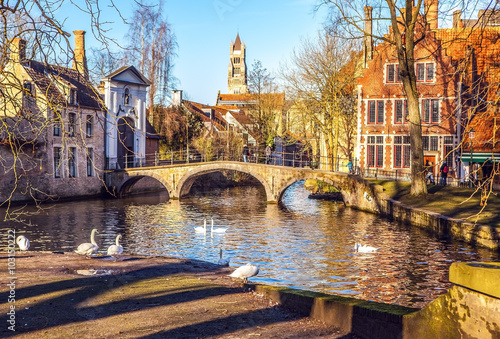 Photo sur Aluminium Bruges Minnewater landscape with swans at evening in Brugge, Belgium.
