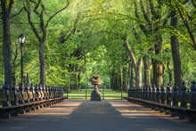 Central Park. Image Of The Mal...
