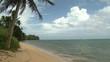 Man Walks Along Tropical Beach In Palau - Shot in full HD 1920x1080 30p on Sony EX1 XDCAM.