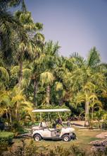 Club Cart Among Palm Trees