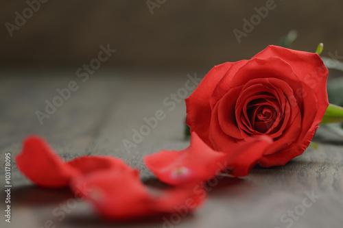 Spoed Fotobehang Rood, zwart, wit single red rose on wooden table