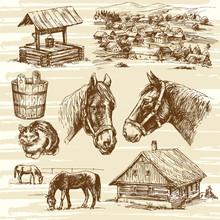 Farm And Horses - Hand Drawn Set