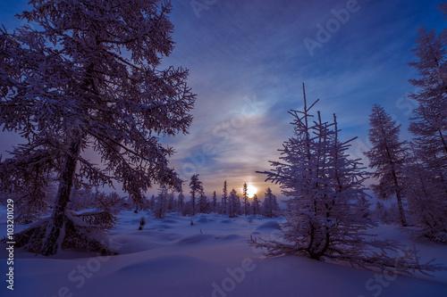 Foto op Plexiglas Aubergine Winter landscape with forest, cloudy sky and sun