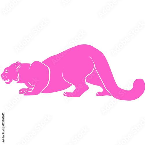 Photo  pink puma with huge tusks