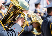 Military Musician With Brass T...