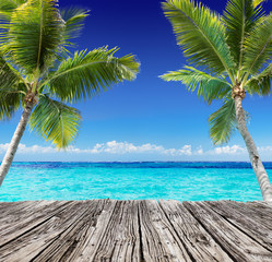Fototapeta Optyczne powiększenie Tropical Seascape With Wooden Plank And Palm Trees On The Turquoise Ocean - Summer Holiday Background