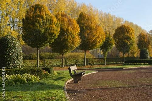 Poster Nature bank in het park tijdens herfst