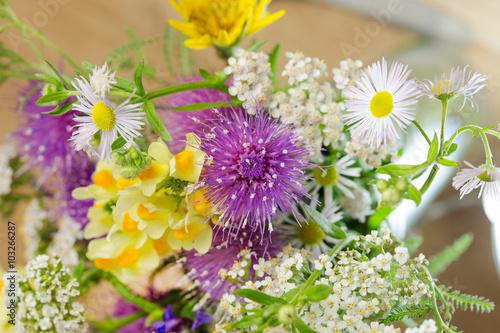 Fototapety, obrazy: Beautiful spring flowers