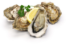 Fresh Oysters Isolated On Whit...