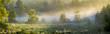 Słońce przebijające się przez mgłę na leśną polanę