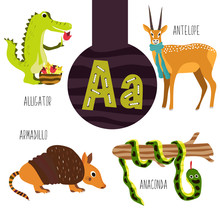 Fun Animal Letters Of The Alphabet For The Development And Learning Of Preschool Children. Set Of Cute Forest, Domestic And Marine Animals With The Letter A. Vector