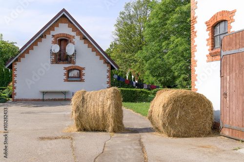 Fotografia, Obraz  Haystacks near stables