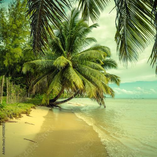 tropikalna-plaza-z-styl-vintage