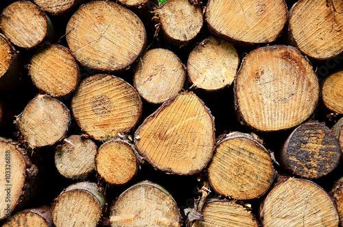 Recess Fitting Firewood texture Holz