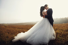 Romantic Fairytale Newlywed Co...