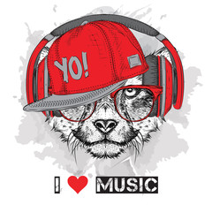 Panel Szklany Muzyka / instrumenty The image of the cheetah in the glasses, headphones and in hip-hop hat. Vector illustration.