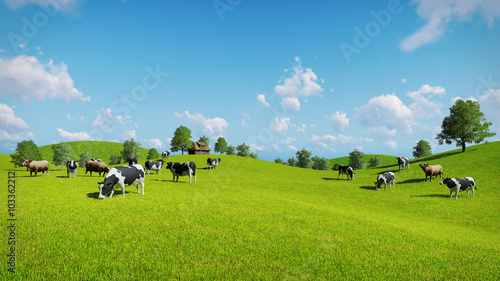 Fototapeta Herd of cows graze on the open green meadows at spring day. Realistic 3D illustration. obraz