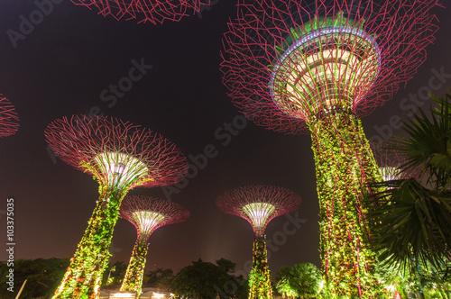 Canvas Prints Singapore Supertree garden at night, Singapore