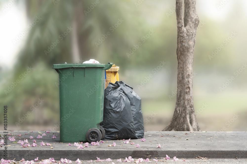 Fototapeta Bins and trash