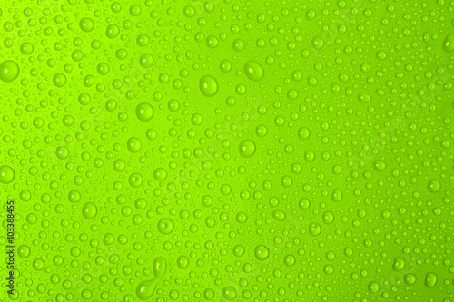 Water Drops On Green Background - 103388455