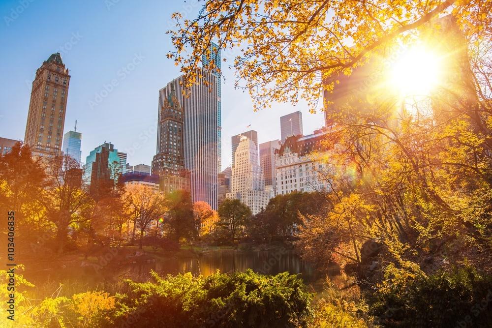 Fototapety, obrazy: New York Central Park
