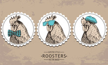 Hand-drawn Vector Vintage Hipster Style Rooster