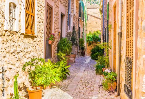 Enge Gasse Mediterran Dorf Gebäude Mit Topfpflanzen Dekoration