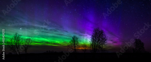 Fotobehang Violet Panoramic photo of green and purple Aurora Borealis in Estonia