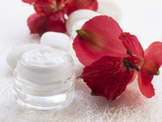Fototapeta facial cream, cosmetics, fresh as flowers