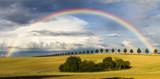 Fototapeta Tęcza - Tęcza nad jesiennym polem