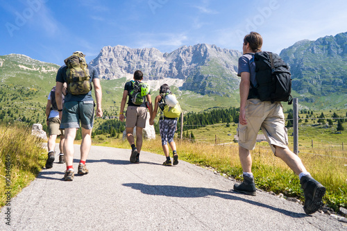 Fotografie, Obraz  group of climbers on the way, friends on a trip in the mountains, Alps in summer