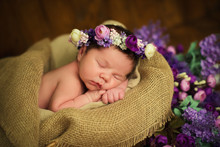 Beautiful Newborn Baby Girl Wi...