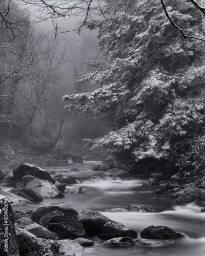 Winter in Great Smoky Mountains National Park Fototapeta