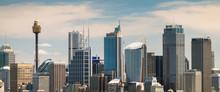 Panoramic View At Sydney City Urban Skyline