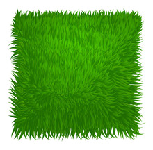 Green Grass Texture Rectangle ...