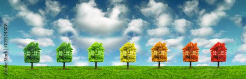 Photo house tree ecology, maison écologie