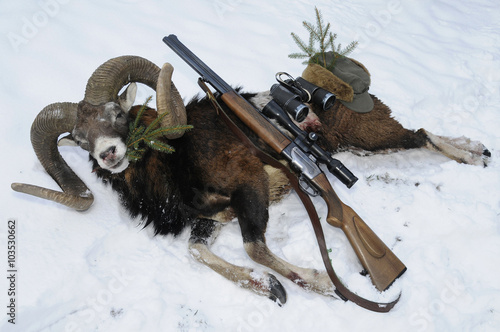 Foto op Canvas Jacht Mouflon hunting trophy with gun on snow
