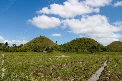 Tuinposter Heuvel Le colline di cioccolato - Filippine