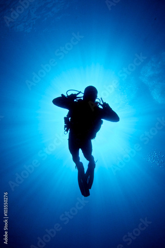 Fotobehang Duiken PEACE, LOVE AND DIVE / A diver between the sun light and the photographer