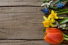 Spring Flowers On Weathered Wo...